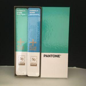 color panetone3